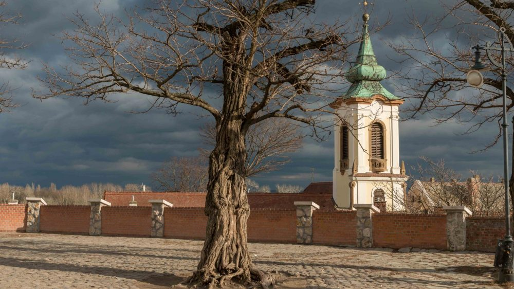 Bicycle tour to Szentendre