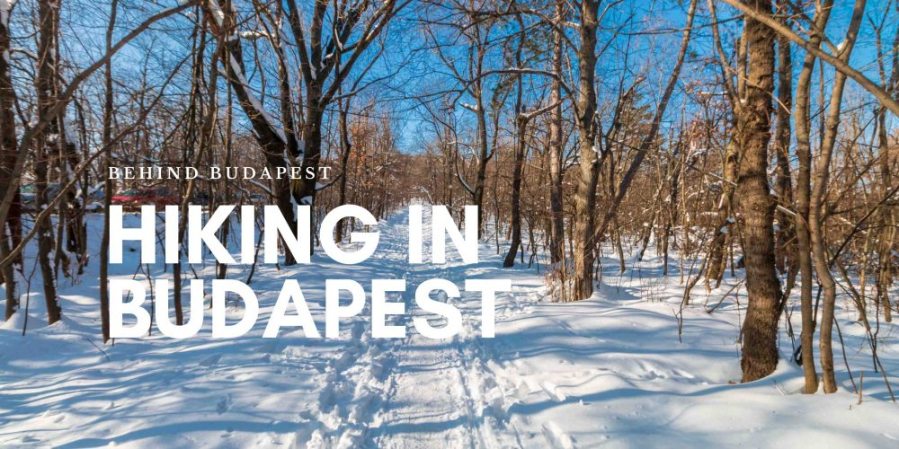 https://behindbudapest.hu/wp-content/uploads/2020/11/hiking_in_budapest_blog.jpg